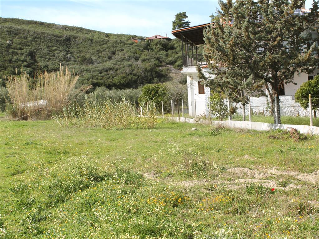 To buy a plot in Kassandra with a license for building